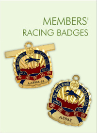 Racing_badges_pic01_f21